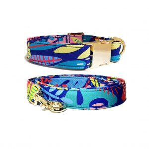 coral lagoon buckle collar