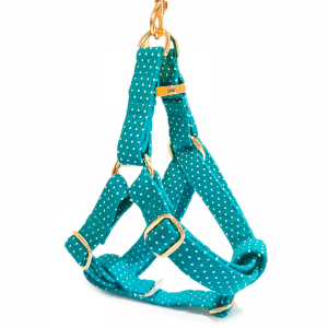 Dotted Blue step in harness
