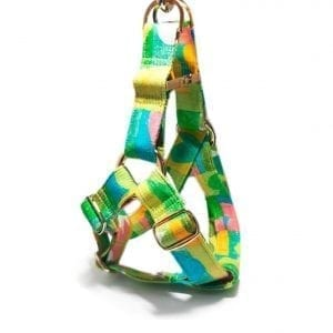 Emerald City Step-In Harness