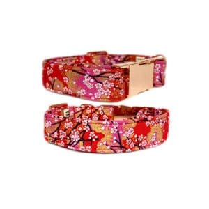 Red Blossoms Buckle Collar and Leash